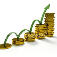 Business Development/Strategy/Start Up